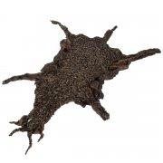 Чистопородная каракулевая шкурка цвет коричневый